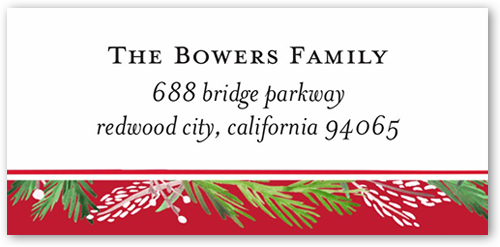 Merry Painted Border Address Label