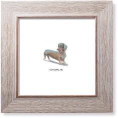 best in show dachshund art print