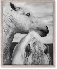 black and white horses wall art