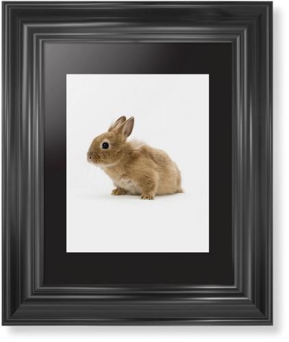 bunny print in classic curve black frame