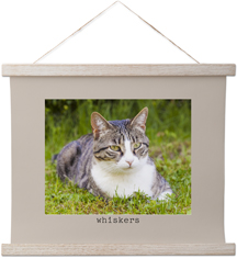 pet gallery of one border hanging canvas print