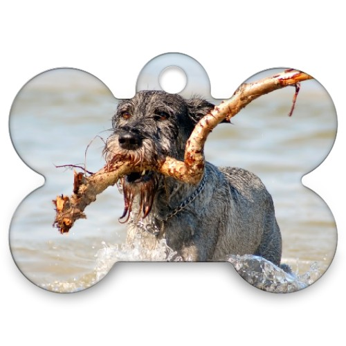 Customized Photo Dog Tag