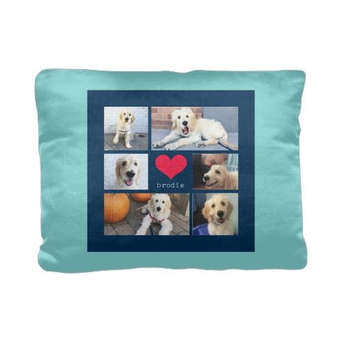 Best In Show Heart Grid Collage Pillow, Cotton Weave, Pillow (Ivory), 12 x 16, Single-sided, ...