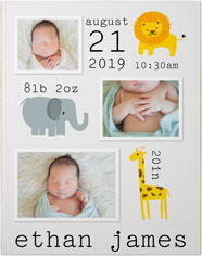 safari baby premium poster