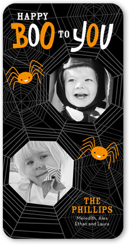 caught in web halloween card by stacy claire - What To Say In A Halloween Card