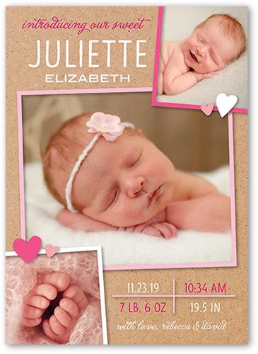 Whimsy Framed Girl Birth Announcement, Square Corners
