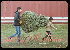 fluttering frame holiday card