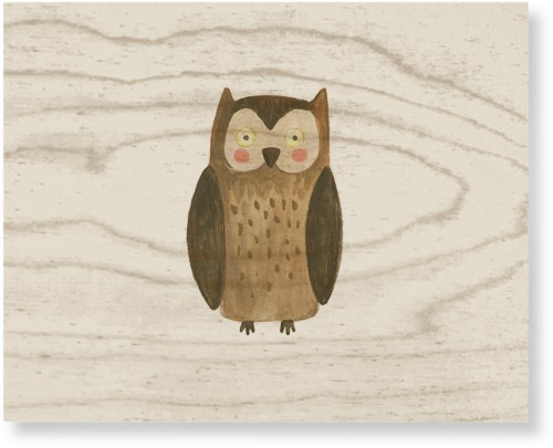 Owl Watercolor Wood Wall Art, Single piece, 8 x 10 inches, Multicolor