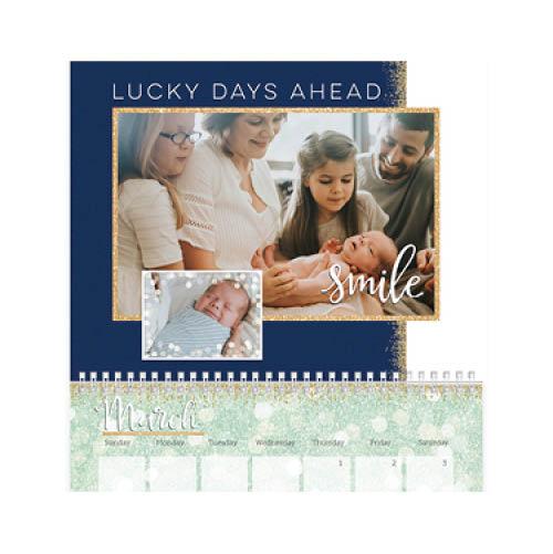 sparkle shine wall calendar